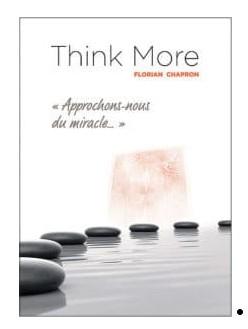 Think More de Florian CHAPRON – (C.A.A.N.) (French PDF)
