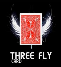 Three Fly Card by Mickael Chatelain