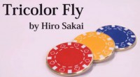 Tricolor Fly by Hiro Sakai