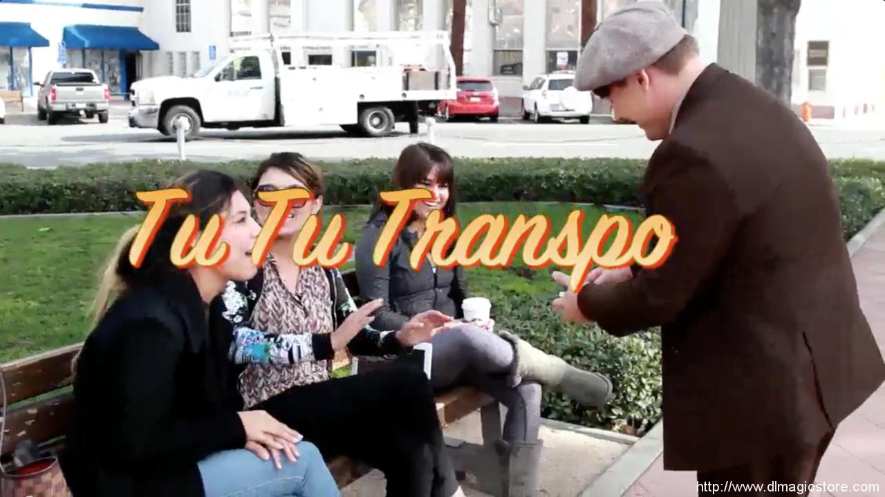 Tu Tu Transpo By Michael O'Brien (Instant Download)