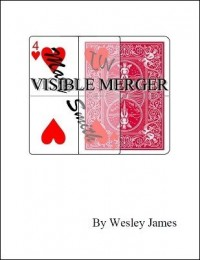 Visible Merger by Wesley James