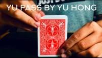 YU Pass by Yu Hong