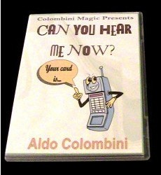 CAN YOU HEAR ME NOW by Aldo Colombini