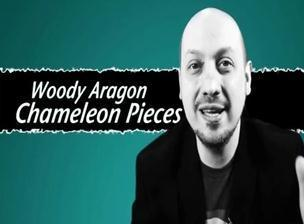 Chameleon Pieces by Woody Aragon