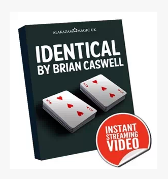 Identical by Brian Caswell