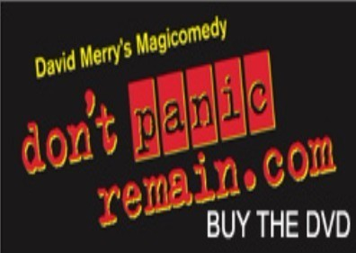 Don't Panic Remain by David Merry