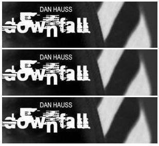 Downfall by Dan Hauss