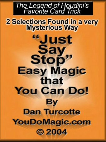 Just Say Stop Final by Dan Turcotte