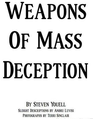 Weapons of Mass Deception by Steven Youell