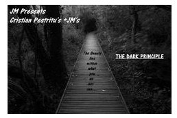The Dark Principle by Cristian and Justin Miller