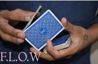 Magic Encarta Presents F.L.O.W by Vivek Singhi Instant Download