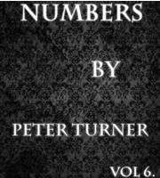 Numbers Vol 6 by Peter Turner DRM Protected Ebook Download
