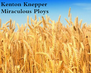 Miraculous Ploys by Kenton Knepper